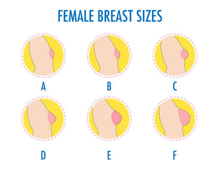 Set of round line icons of different female breast size, body side view. Various boobs sizes, from small to large. Sizes of busts, from A to F. Vector isolated on white.