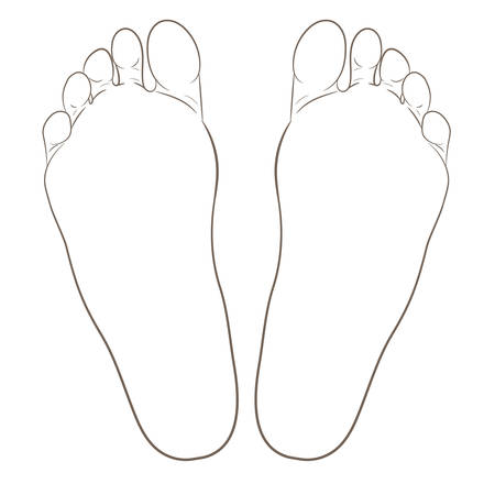 Left and right foot soles contour illustration for biomechanics, footwear, shoe concepts, medical, health, massage, spa, acupuncture centers. Realistic cartoon style contour. Vector isolated on white.