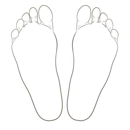 Ilustración de contorno de suelas de los pies izquierdo y derecho para biomecánica, calzado, conceptos de calzado, médicos, salud, masajes, spa, centros de acupuntura. Contorno realista del estilo de la historieta. Vector aislado en blanco.