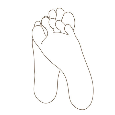 Female or male foot soles, barefoot, bottom view. Vector illustration, hand drawn cartoon style isolated on white, black and white contour Illustration