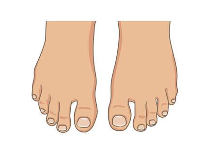 Suola del piede femminile o maschile, a piedi nudi, vista dall'alto. Unghie dei piedi con il pedicure. Illustrazione di vettore, stile disegnato a mano del fumetto isolato su bianco. Vettoriali