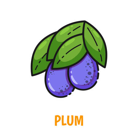 Vector icon of plum with leaves, cute flat line style. Illustration for food themed products: stickers, package, kitchen textile and accessories, menu, food markets etc.