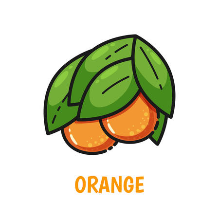 Vector icon of orange with leaves, cute flat line style. Illustration for food themed products: stickers, package, kitchen textile and accessories, menu, food markets etc. Illusztráció