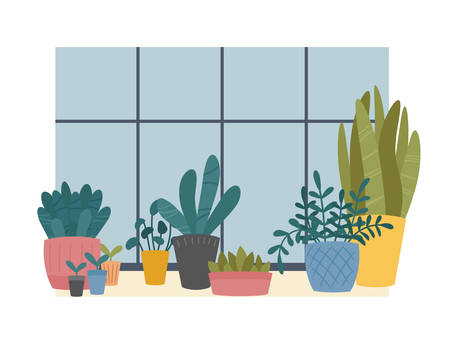 Indoor home plants in pots composition standing on windowsill. Window sill with potted flowers, succulents and sprouts. Flat cartoon Scandinavian style.