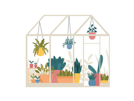 Greenhouse with potted and hanging garden plants vector illustration, cute Scandinavian Hygge style.Glass green house seasonal greeting card.Conservatory with growing plants in pots and planters.
