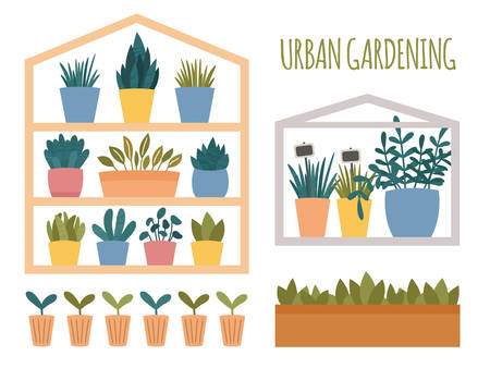 Urban gardening set with potted plants elements. Green mini house with pots, box and cups with sprout and seedling. Flat cartoon scandinavian style.