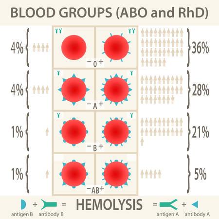 ABO ・ RhD 血液型システム ダイアグラムとインフォ グラフィック。ベクトル図 EPS10。