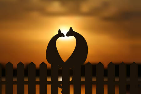 romantic couple: Cats in love silhouette on the fence in sunset. EPS vector illustration