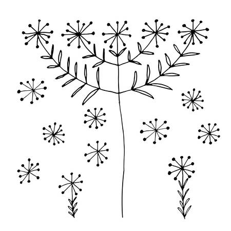 blowball: Set of abstract black hand drawn dandelion blowball flowers in doodle style. Vector Illustration EPS10. Illustration