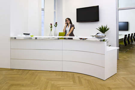 hotel reception: a front desk lady in the office