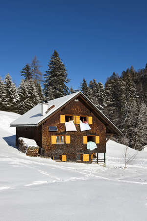xxxl: Very detailed XXXL photo of a rural sunny winter landscape with occupied chalet