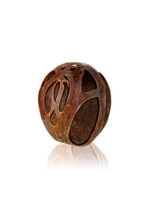 mace: Isolated nutmeg with the wonderful dried shell and mirroring  Stock Photo