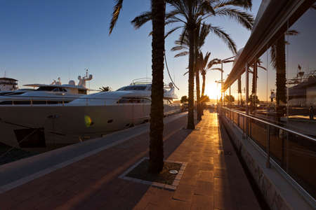 portals: Sunset at the famous Puerto Portals with luxury yachts in Majorca - Balearic Island from Spain. It is one of the most prestigious nautical and leisure complex of the island, and of the Mediterranean.