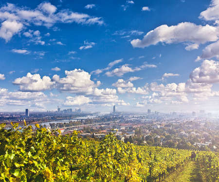 View of the Danube River and the skyline of Vienna. The Vineyards in front are from Nussdorf a suburb of Vienna in the 19th district of Doebling. Stock Photo