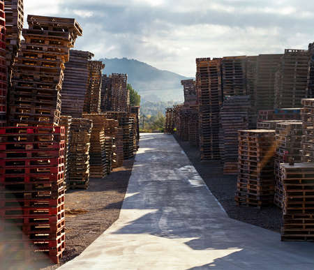 Path through a outdoor storage area with a large amount of pallets stacks and nature landscape at the end. The scene seems a bit surreal in a way. Stock Photo