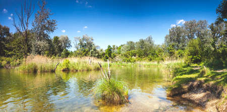 Dechantlacke is one of many ponds of the Danube Auen National Park Vienna. It covers 93 square kilometres in Vienna and Lower Austria and is one of the largest remaining floodplains of the Danube in Middle Europe.