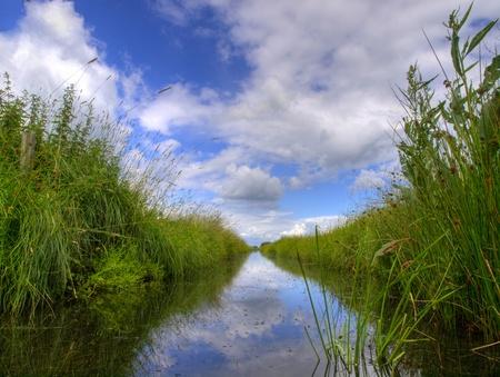 polder: Freshwater ditch in dutch polder landscape