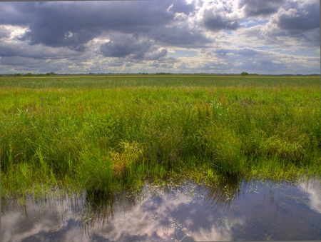 polder: typical dutch polder with brooding sky Stock Photo