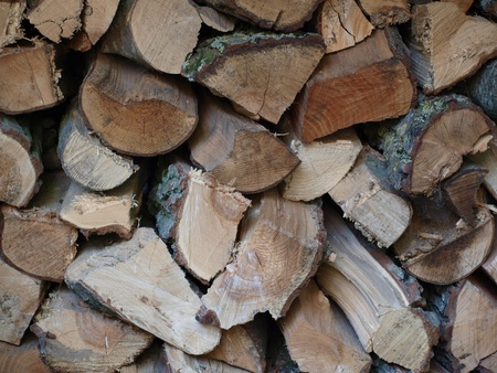 chainsaw: Detail of a pile of firewood