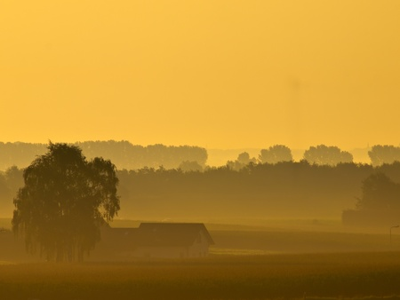 lonely house during misty sunrise in agricultural landscape Stock Photo - 10834548