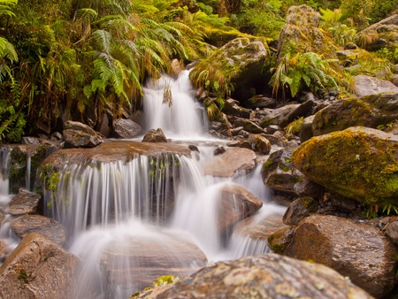 A rainforest waterfall in lush tropical forest photo