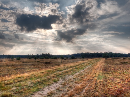 hdr: A straight trail is dissapearing at the horizon on a dutch nature reserve Stock Photo
