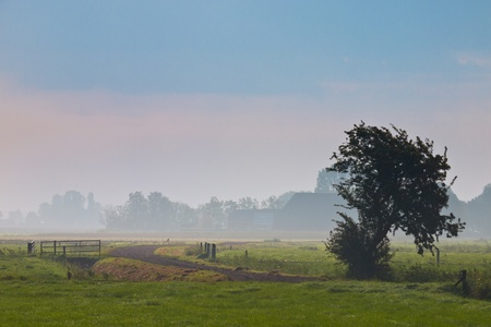 agricultural landscape in morning mist Stock Photo - 11334418