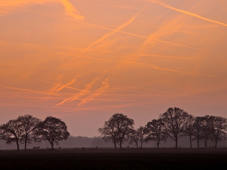 congested: Orange contrails during sunset over a row of trees Stock Photo