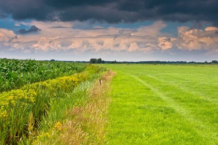 dramatic sky above dutch agricultural landscape Stock Photo - 12285885