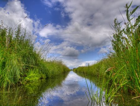 Freshwater ditch in dutch conservation area photo