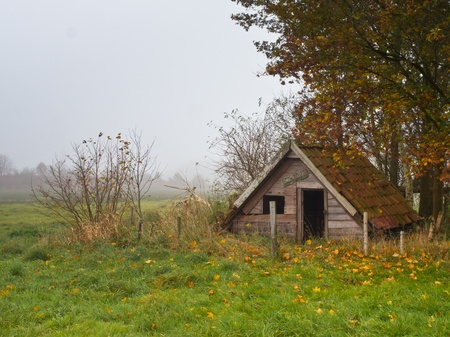 Shattered shed in foggy landscape photo