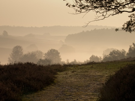 posbank: A trail in a hilly misty landscape during sunrise
