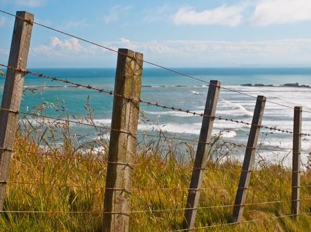 stockade: An oceanview behind a batten sheep fence on a cape
