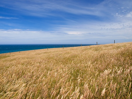 Background of a grassy hill with ocean and sky in backdrop Stock Photo - 12901264