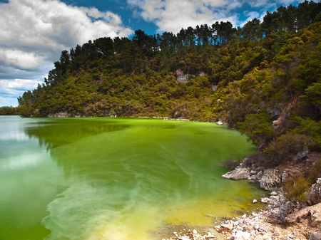 Bright green geothermal lake in rotorua new zealand photo
