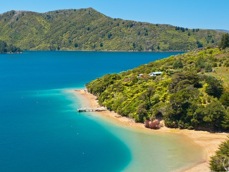 Green forest and blue water in the Marlborough sounds, New Zealand photo