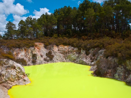 Yellow sulfur pool in a gethermal area in new zealand photo