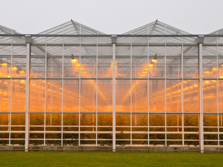 The exterior of a giant commercial glasshouse Stock Photo