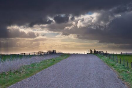 Country road is leading to spectacular cloudscape in national park Lauwersmeergebied photo