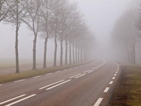 dreary: Misty road in rural landscape