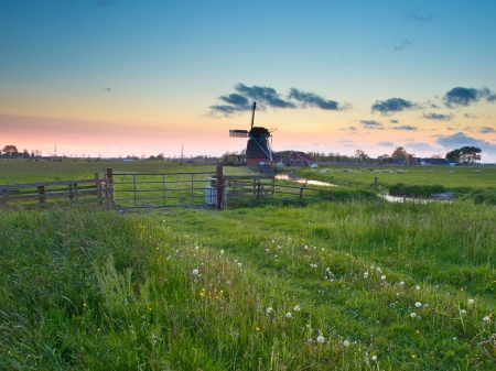 Typical dutch landscape with vintage wind mill during sunset photo