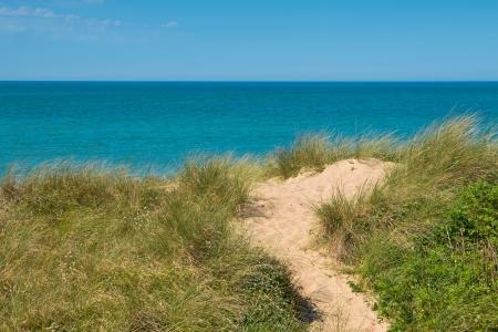 sea grass: Beach, dune, sea view over the Dover strait near calais