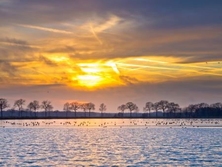 Spectacular sunset over half frozen lake in the netherlands in winter Stock Photo - 16076017