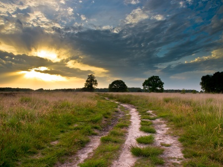 heathland: Spectacular Sunset over Trail in Natural Heathland in The Netherlands