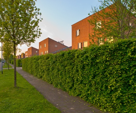 Suburban street with modern houses and sidewalk in the Netherlands photo
