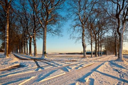 Crossroads of Snowy lanes in a Winter Landscape 版權商用圖片