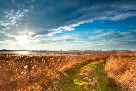Rural Trail durch Grassy Field am Lakeside bei Sonnenuntergang führenden to Heaven Standard-Bild
