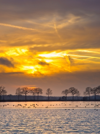 Spectacular sunset over half frozen lake in the netherlands in winter photo