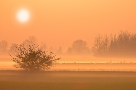 spectacular: Spectaculair Peach-colored Sunset with Orange Haze and Fog
