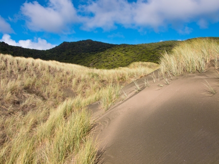 Abstract Dune Background under a cloudy summer sky in New Zealand photo
